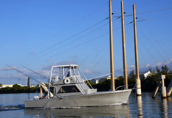 Deep sea fishing key west travel guide for Deep sea fishing key west
