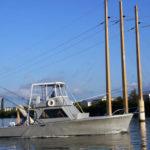 fishing-linda-d-iv