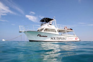 46' SCUBA dive boat does a morning wreck diving trip and an afternoon reef diving trip.
