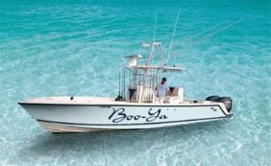 Center console light-tackle fishing charter