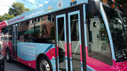Duval Loop bus, turqoise and pink