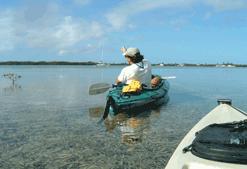 Kayak guide explaining the eco-system of Key West
