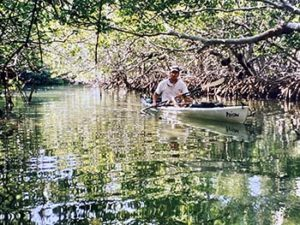 Man kayaking through the mangroves