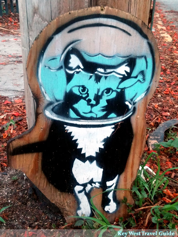 Street art in Key West of a cat with fishbowl over head