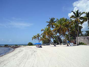 Soft sand beach and palm trees at Smathers Beach in Key West