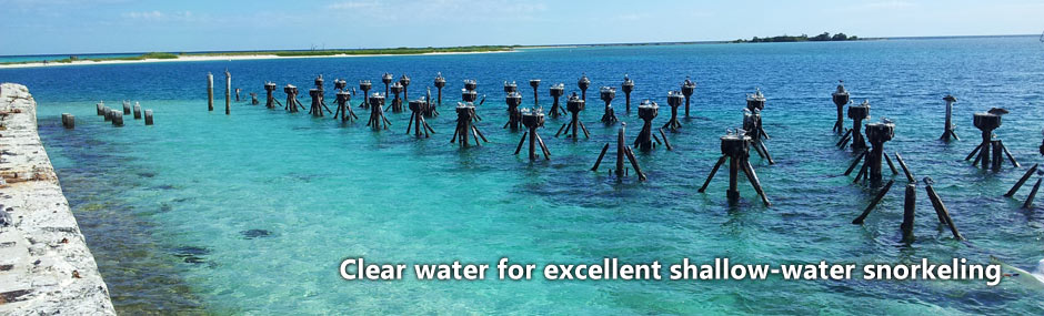 Clear nearshore water in the Dry Tortugas, providing excellent snorkeling conditions
