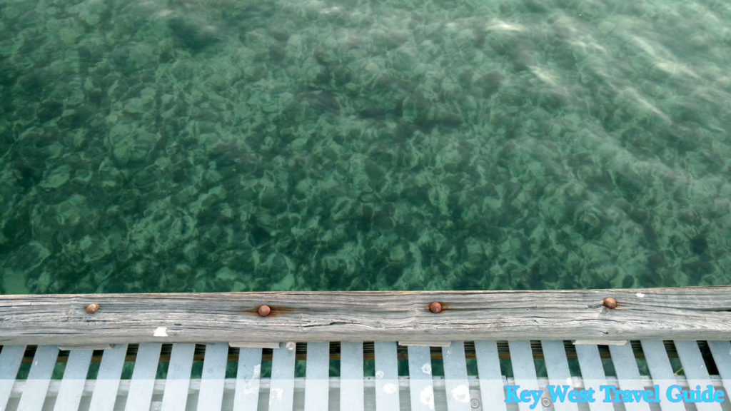 Photos showing view from dock into clear water of Key West ocean