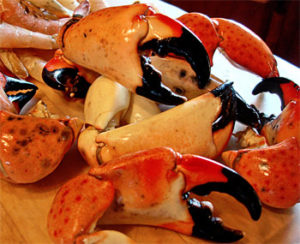 Stone crab claws with their vibrant shells