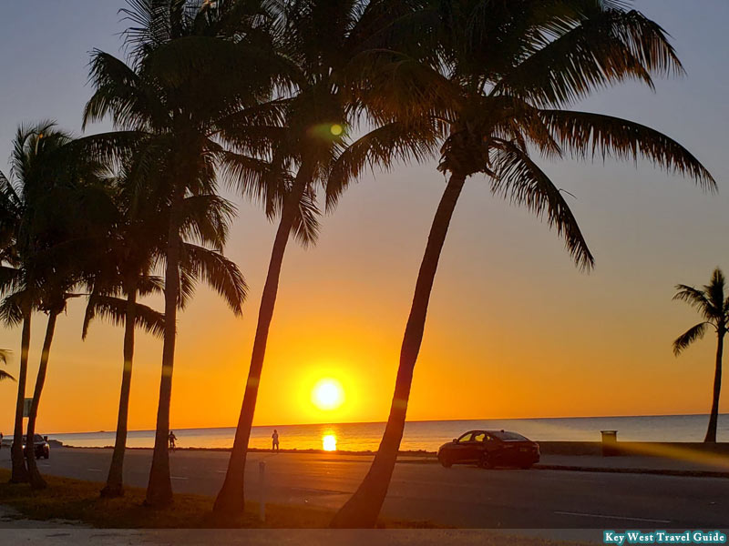 Sunrise at the beach, with palm trees in Key West